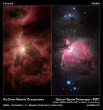 Orion nebula in infrared and optical
